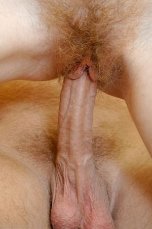 Hairy Penis Porn