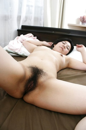 Hairy Asian Porn